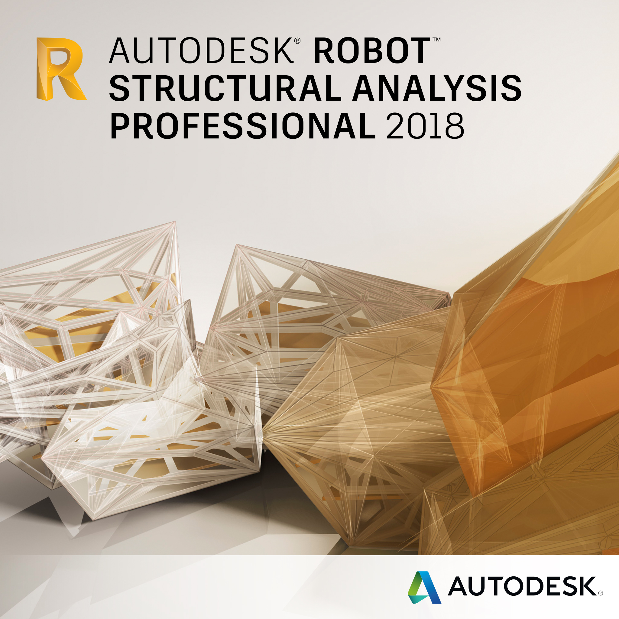 Autodesk Robot Structural Analysis Professional badge